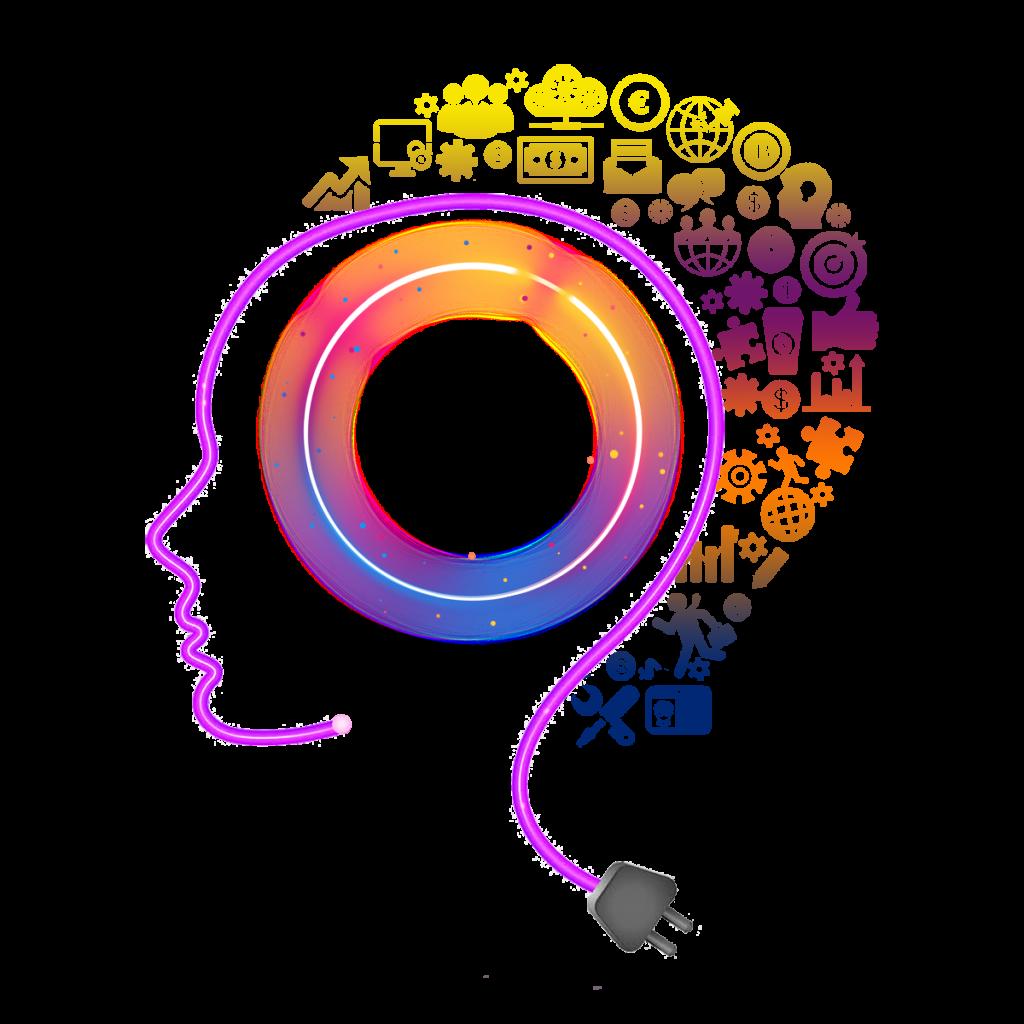 schématisé les différentes parties du cerveau